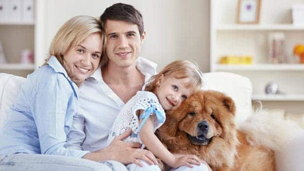 Wills & Trusts dog-young-family Direct Wills Richmond upon Thames